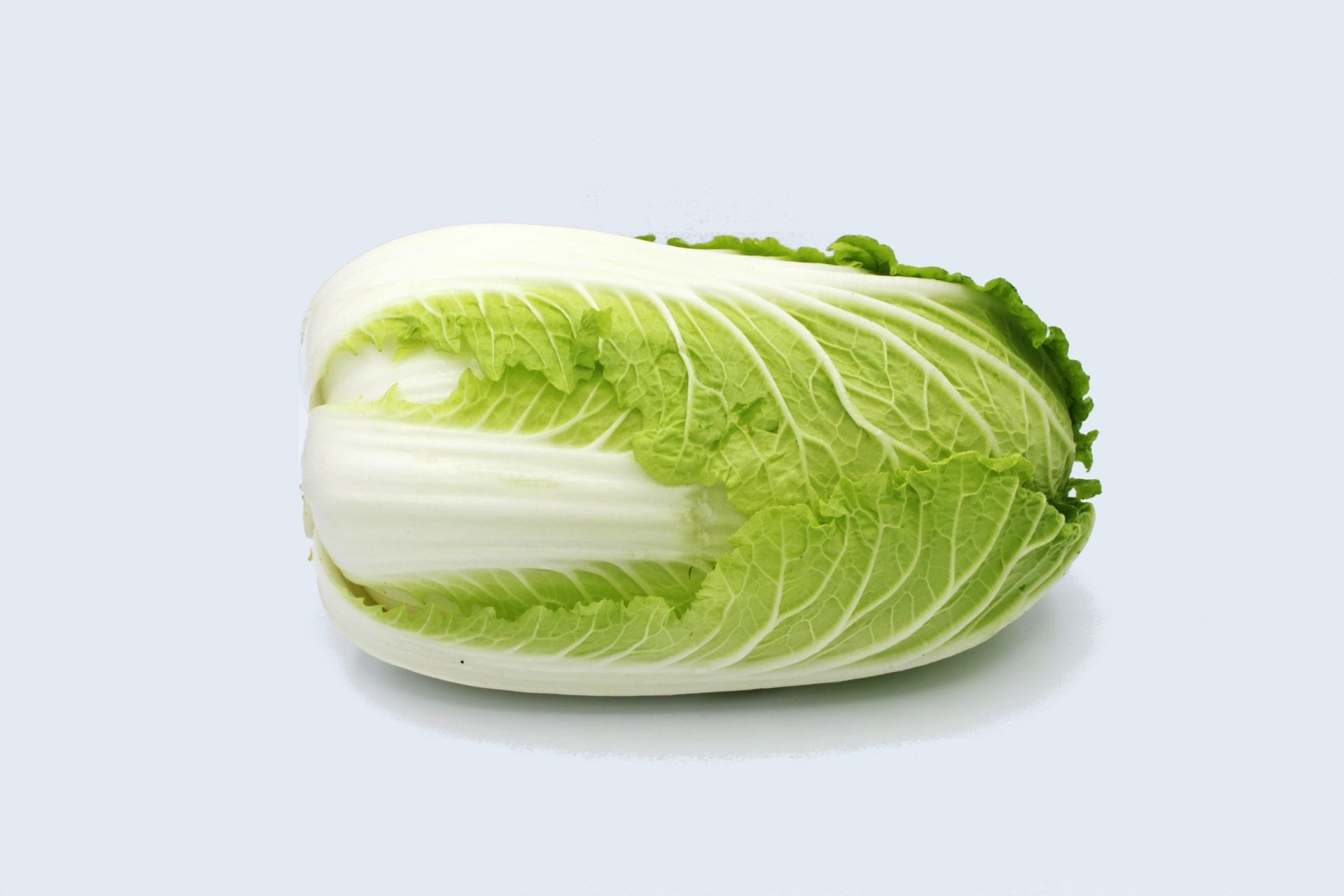 葉や茎を食べる野菜